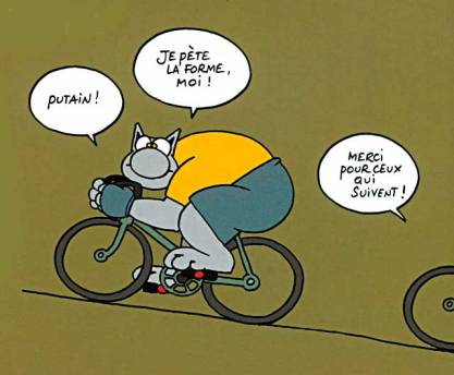 le_chat_velo