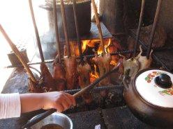Les cochons d'inde (cuy)