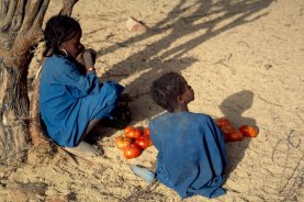enfants_tomates_p