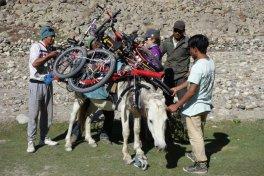 Chargement : essais des meilleures configurations pour ne pas blesser le cheval