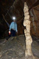 Grotte de l'Ours - Stalagmite