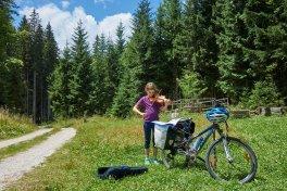 Violon en Slovénie