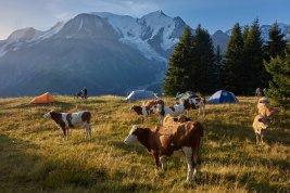 Bivouac vers le Prarion, face au Mont-Blanc (France)