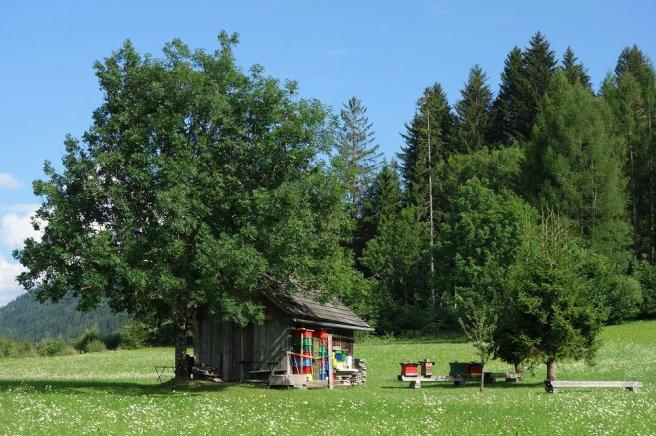 """""""Maison de ruches"""" au bord du lac de Weissensee"""