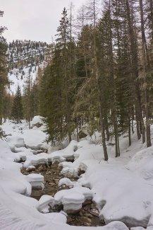 Beaucoup de neige cette année