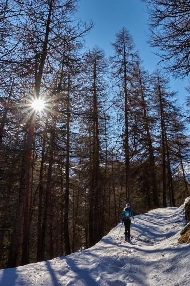 Montée versant nord dans le vallon du Lautaret, donc enneigé ! Pas de portage !