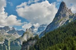 Le Grand Manchet et la Grande Casse encapuchonnée