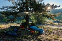 Le bivouac au petit matin, sous un arbre salvateur.